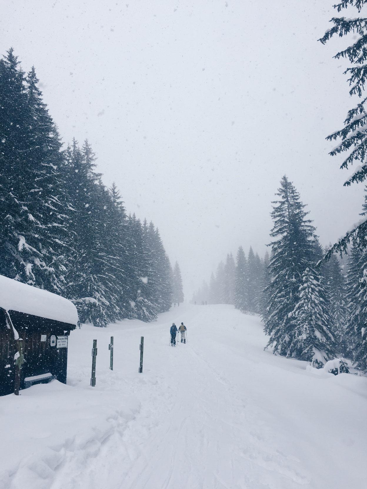 munichmountaingirls-bellaontour-isabella-lang-wandern-skitour-taubenstein