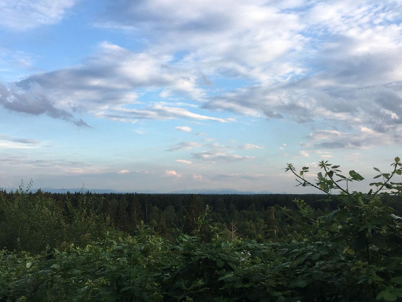 munichmountaingirls-bergblog-muenchen-julia-eisenhardt-mugl-perlacher-forst-bergblick