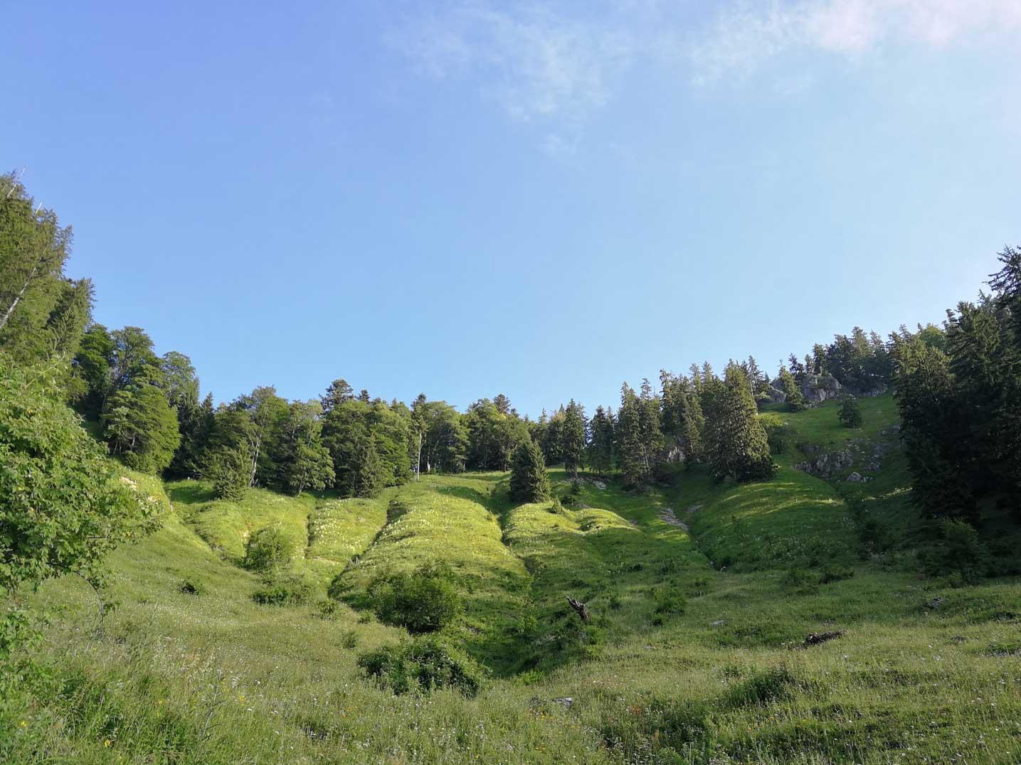 wiese-munichmountaingirls-wandern-groehrkopf-nesslauer-schneid-berge