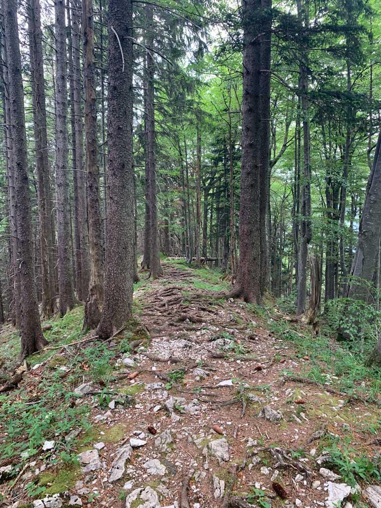 berge-seen-trail-salzkammergut-wanderweg-filbling-munichmountaingirls
