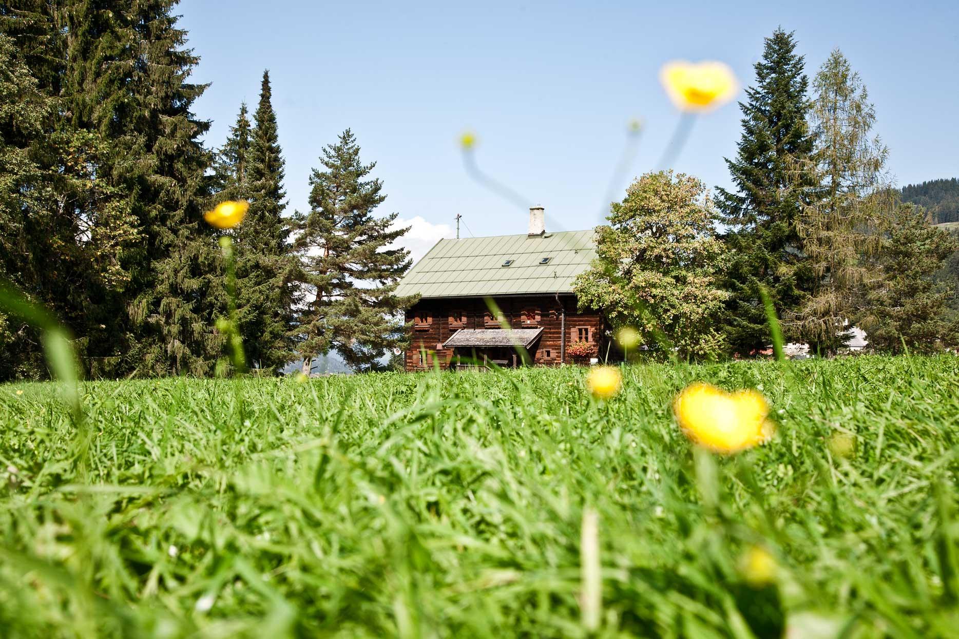 Oberlandhütte_Sommer_wiese