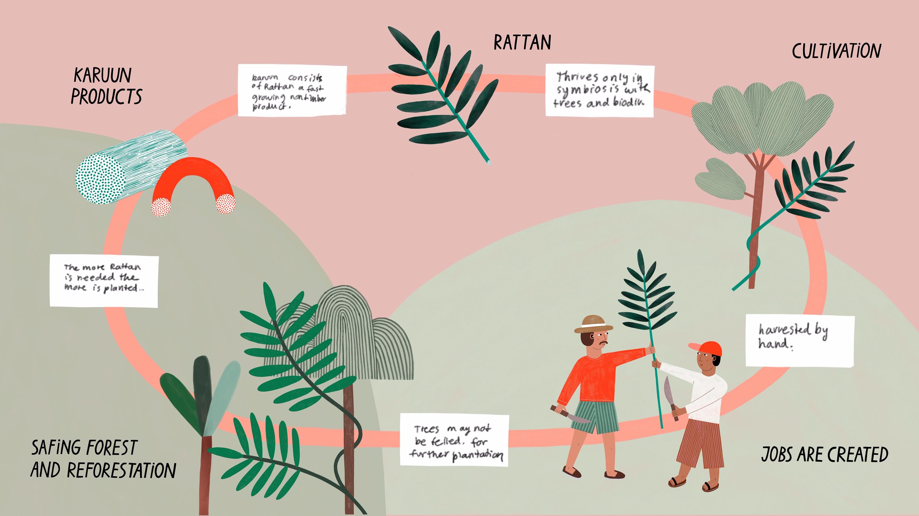 karuun-Cycle_Illustration_®Anna-Katharina-Jansen