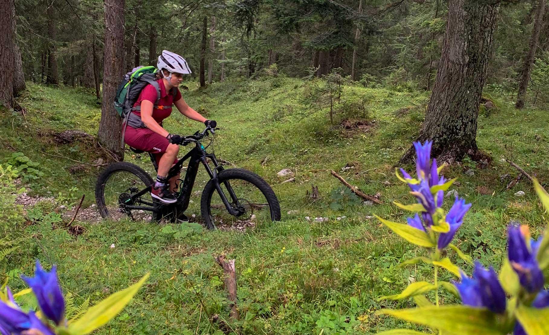 mtb-trails-wald-tiroler-zugspitz-arena