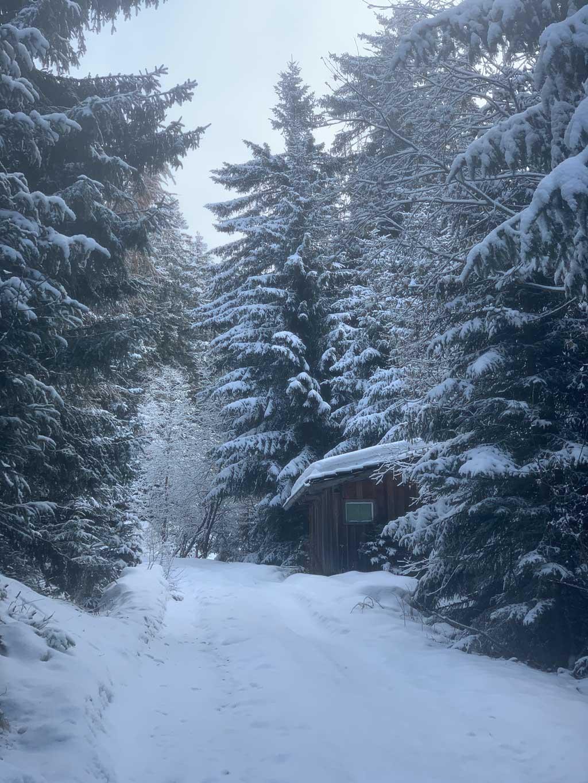 winterwandern-zillertal