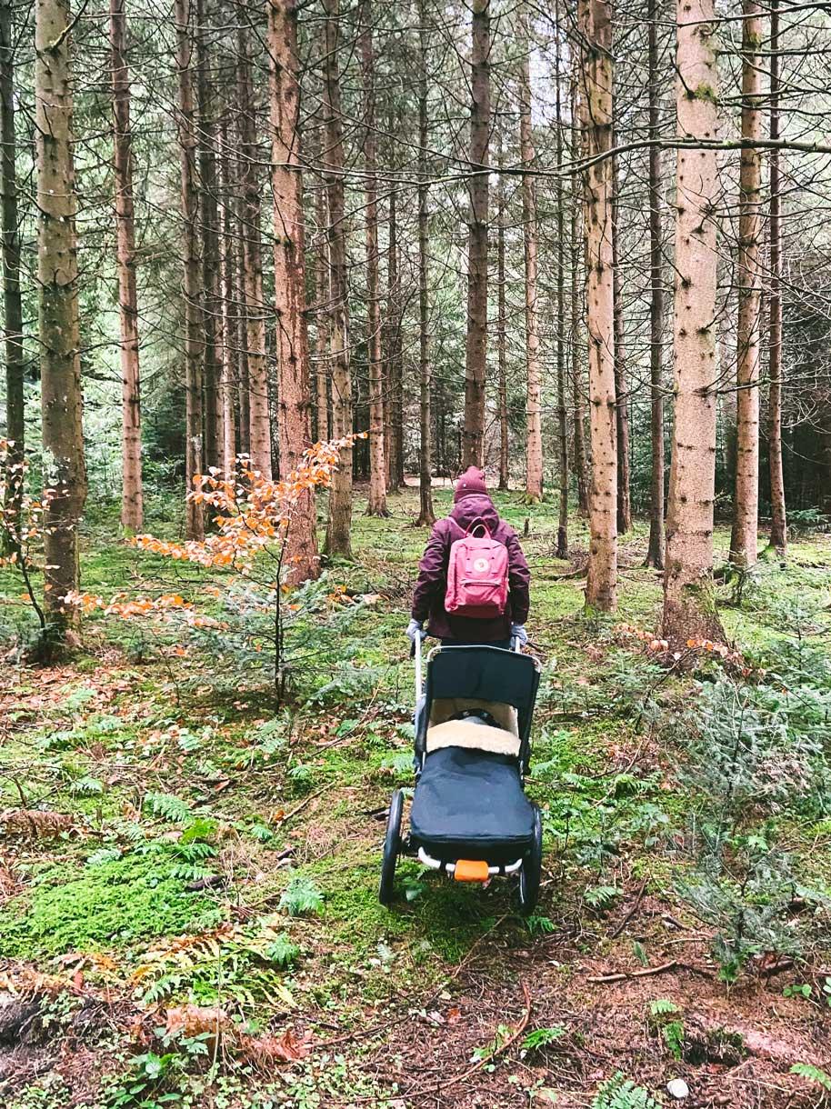 Taubenberg-outdoor-kinderwagen-wald