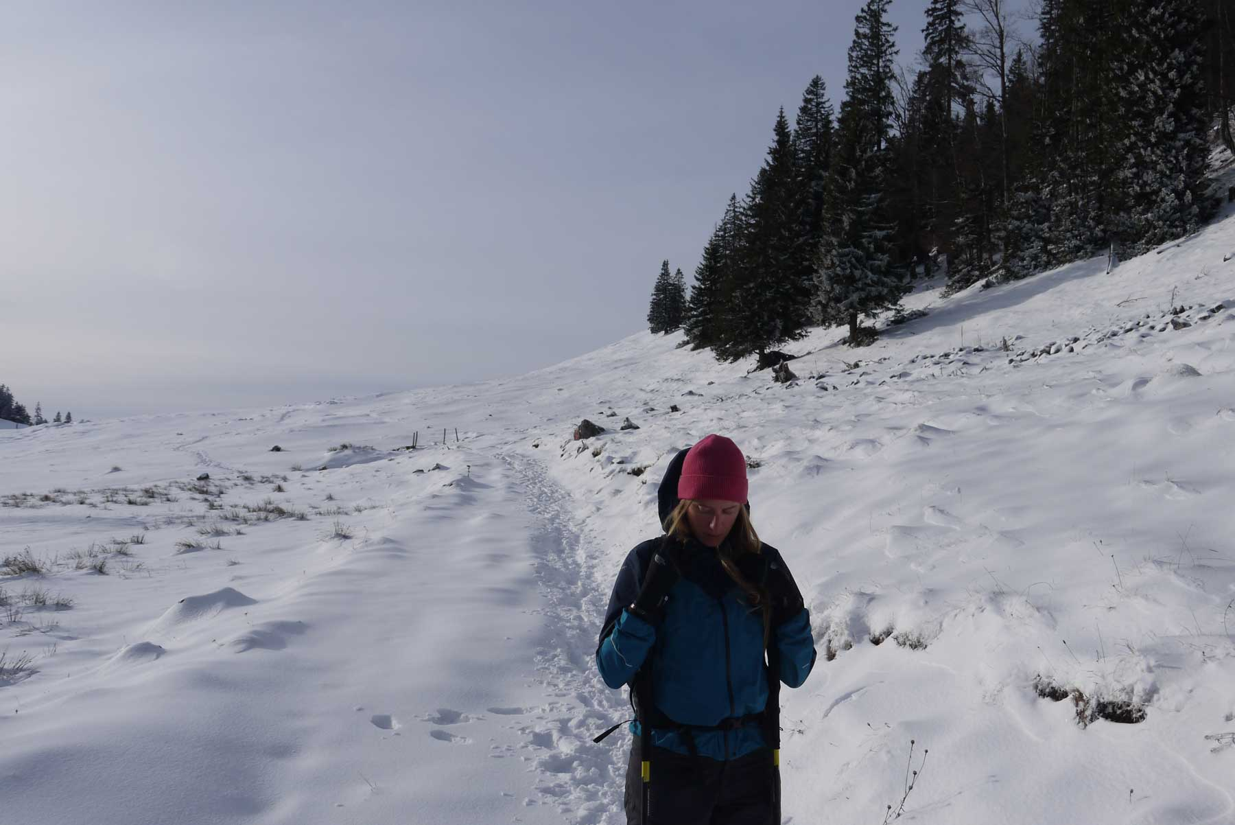 winterwandern-bayern
