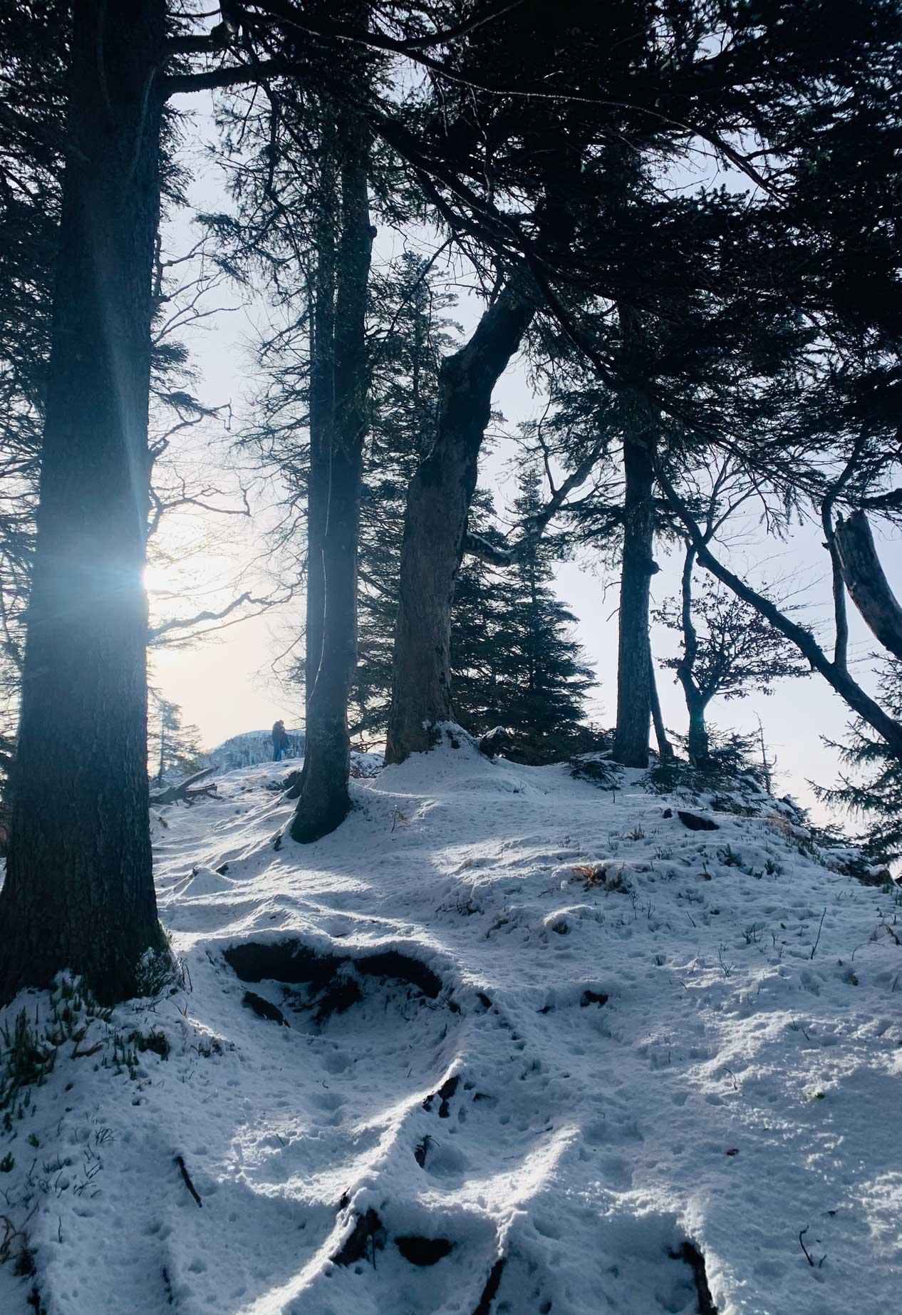 winterwandern-tipps